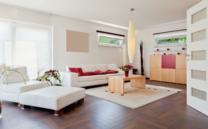 Living room with white sofa and dark wooden floor