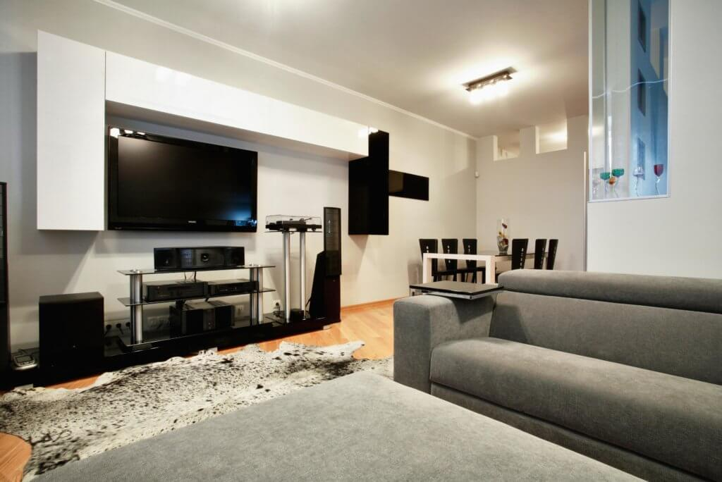 Living room in basemenet with sofa and TV